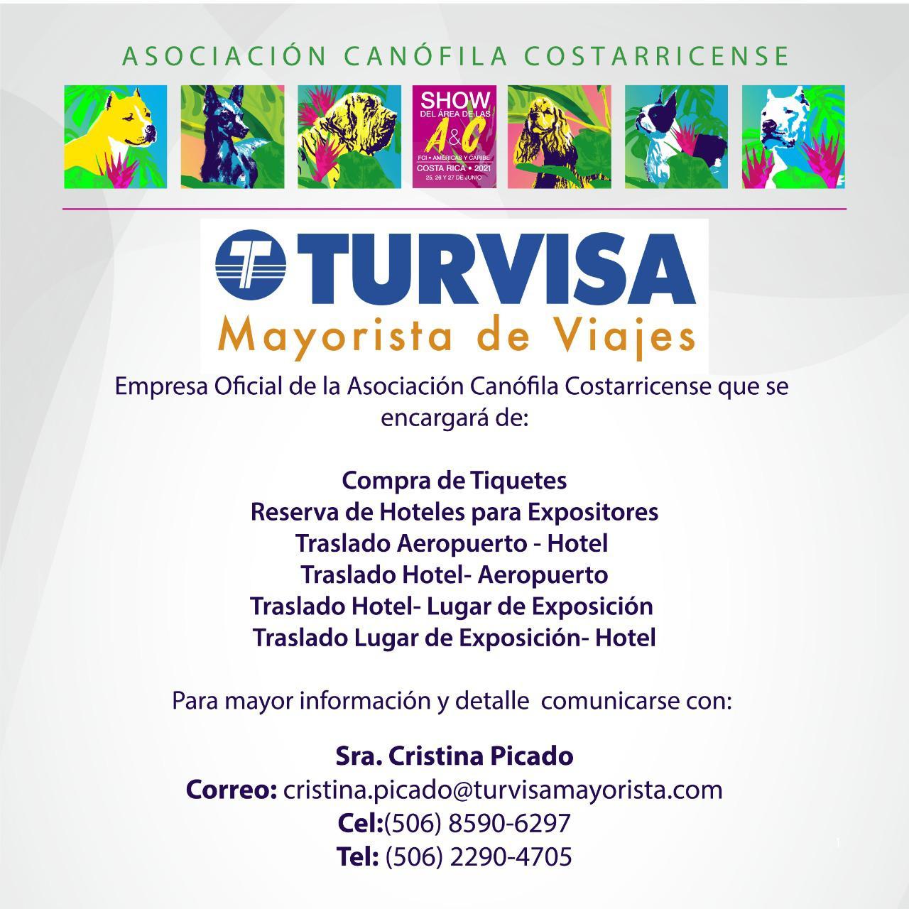 show-americas-card-3